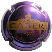 CABER-V.3271