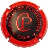 CASTELO PEDREGOSA-V.4814-X.04068