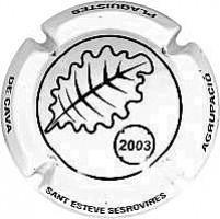Sant Esteve Sesrovires-X.3007149