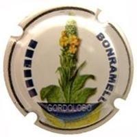 BONRAMELL-X.86776 (GORDOLOBO)