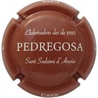 CASTELO DE PEDREGOSA-X.ECSG130348