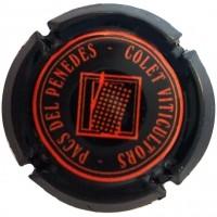 JOSEP COLET ORGA-x.111273 (taronja)