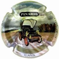 PINARIO V.15331 - X.53699